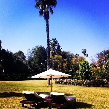 La Gazelle d'Or : The gardens and chairs outside villa