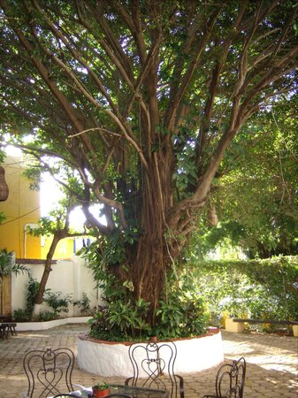 Hotel Xbalamqué Resort & Spa: Hotel courtyard