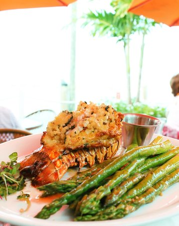 Matanzas on the Bay : Florida spiny lobster with a shrimp and basil crust.