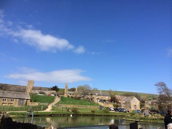 Abbotsbury Childrens Farm: gorgeous
