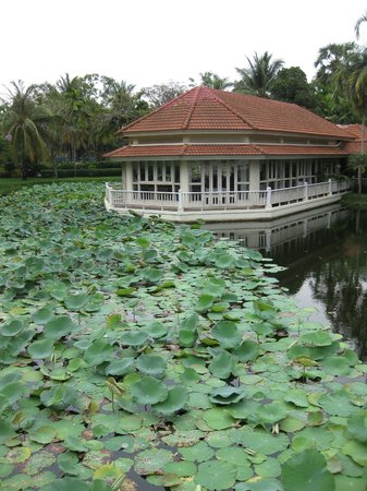 Sofitel Angkor Phokeethra Golf and Spa Resort: Lotus pool and mouhout's dream