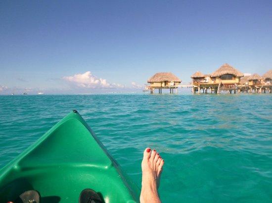 Le Taha'a Island Resort & Spa : snorkling around the island