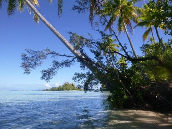 Le Taha'a Island Resort & Spa : More beauty