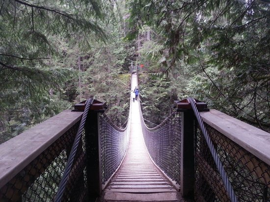 Lynn Canyon Suspension Bridge: Die Hängebrücke