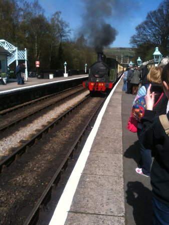 Pickering to Whitby Steam train