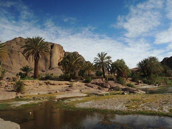 Auberge La Terrasse des Delices : oasis