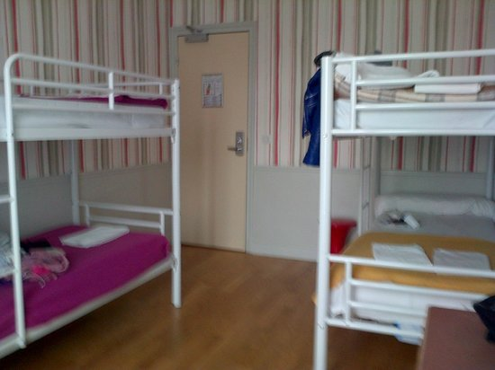 Perfect Hotel & Hostel : 4 bed female room