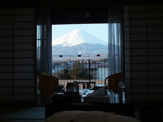 Fujisan Station Hotel: Fuji view from the room.