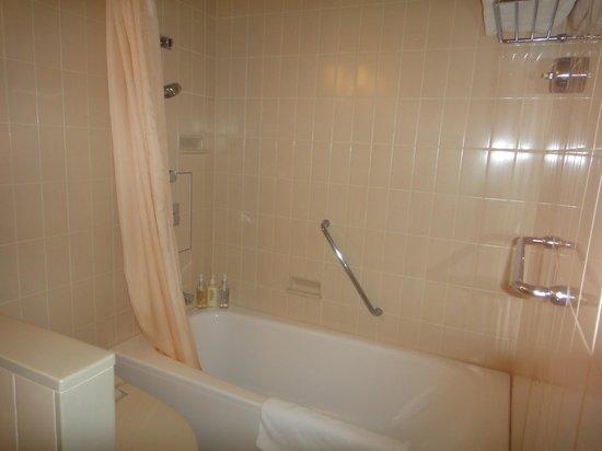 ANA Crowne Plaza Hotel Narita: Salle de bains