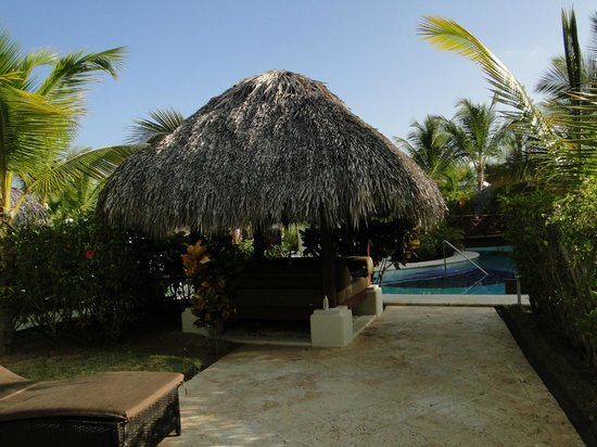 The Reserve at Paradisus Palma Real: Jardin privé
