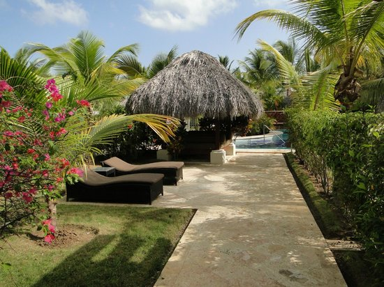 The Reserve at Paradisus Palma Real: Jardin et accès piscine