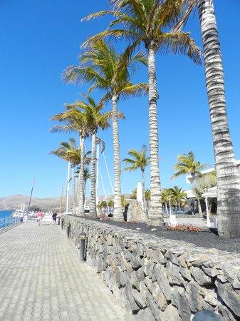 Hotel Costa Calero : The Harbour