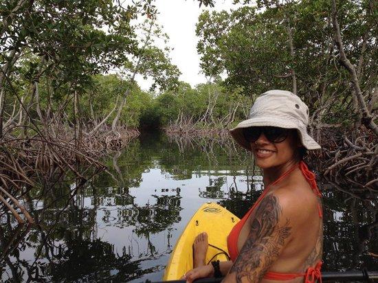 Captain Jak's Cabanas: Kayaking in the Mangroves