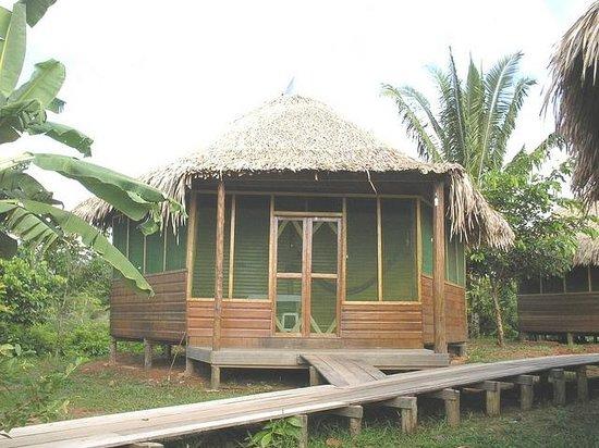 Ararinha Jungle Hotel: um dos chalés