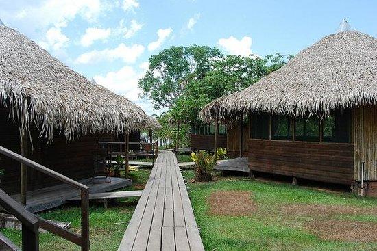 Ararinha Jungle Hotel: no meio dos quartos