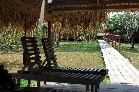 Ararinha Jungle Hotel: a entrada