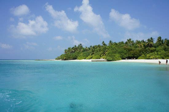 Makunudu Island : Bluer than the sky!