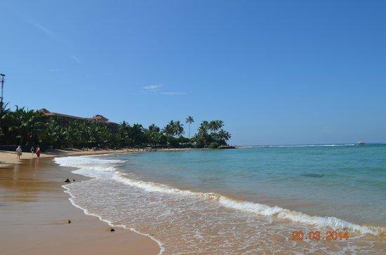 Hikka Tranz by Cinnamon: Вид на отель с пляжа