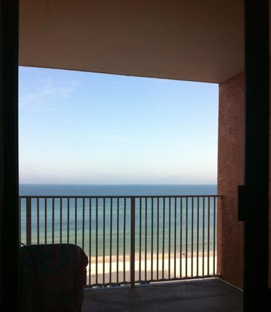 Osprey on the Gulf: View from bed closest to balcony