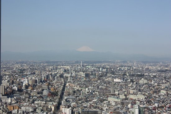 Park Hyatt Tokyo: View of the city and Mount Fuji from 41st floor