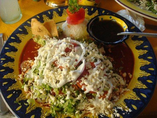 Maria Jimenez Restaurante Mexicano: Chicken Enchiladas