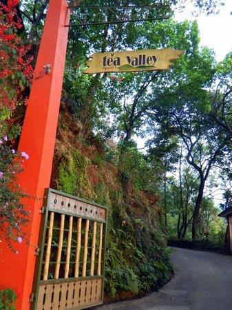 Tea Valley Resort: Entry to the resort