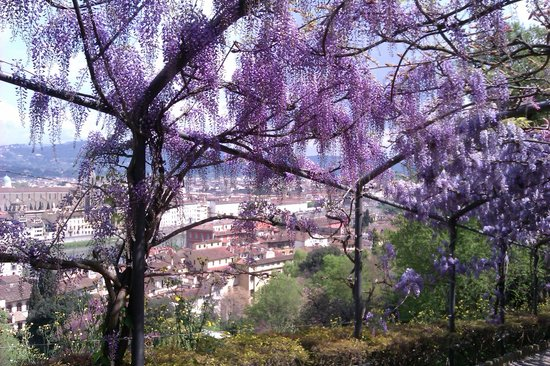 The Boboli gardens are a must and good value-10 euros and spent most of day there