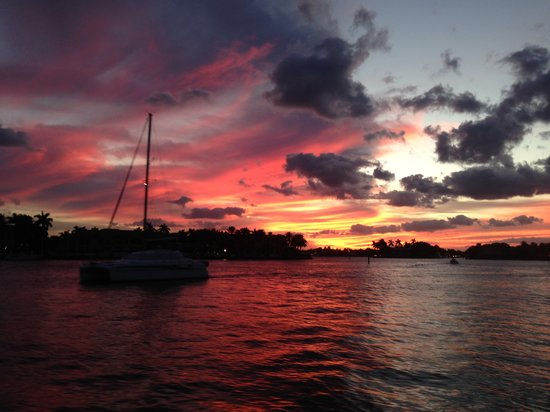 Boat Tours Broward County