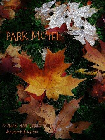 Park Motel : Come to The Park!