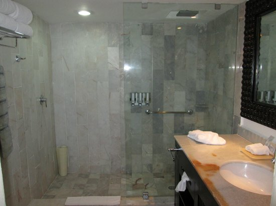 Barcelo Puerto Vallarta: shower no tub here