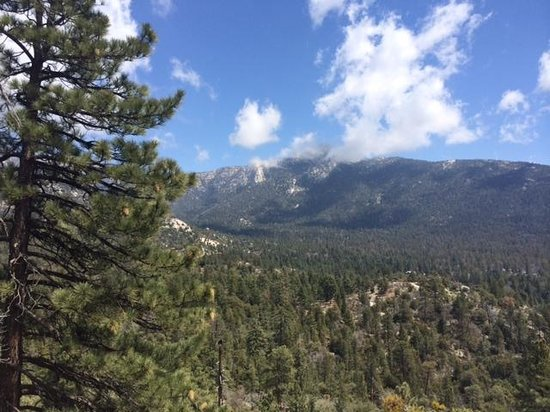 Idyllwild Nature Center: View from the Summit Loop Trail