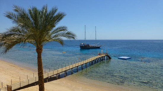 Hyatt Regency Sharm El Sheikh Resort : club beach