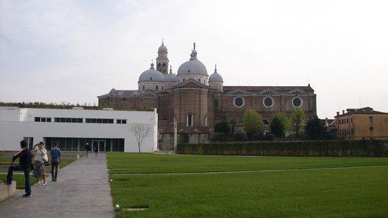 Orto Botanico di Padova: orto botanico con vista sulla Basilica di Santa Giustina