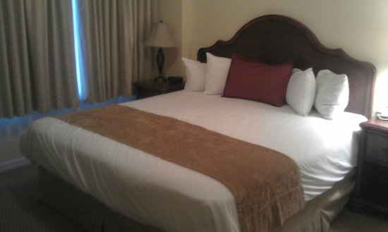 The Point Hotel & Suites: The BEST part of this hotel - the bed was MASSIVE and very comfy