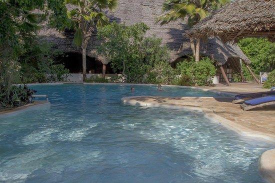 Unguja Lodge : na een  tropische middag  in Stonetown chillen in het zwembad