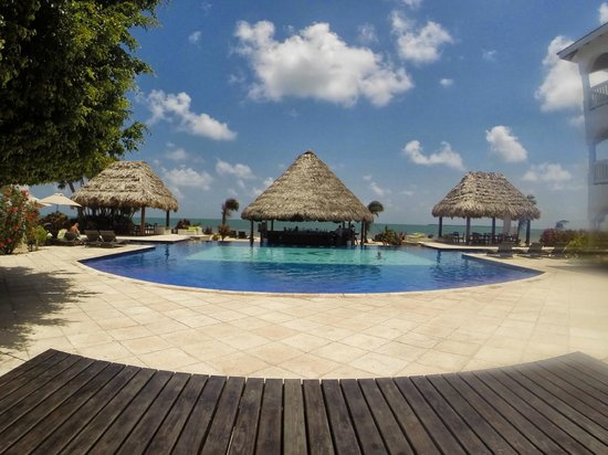 Belize Ocean Club Resort : The best pool in Belize.