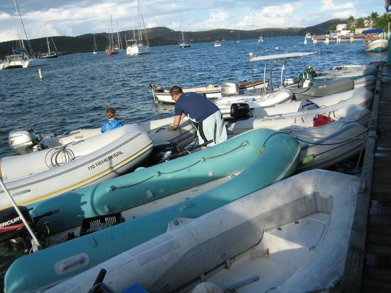 Busy times at  Dinghy Dock!