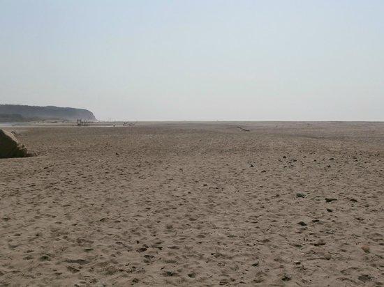 Playa La Bocana: Beach that goes on forever