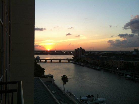 Tampa Marriott Waterside Hotel & Marina: Sunrise