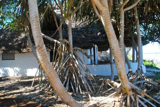 Matemwe Lodge, Asilia Africa: hut