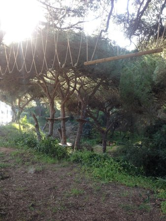 Luso Aventura Albufeira: Not for the faint-hearted