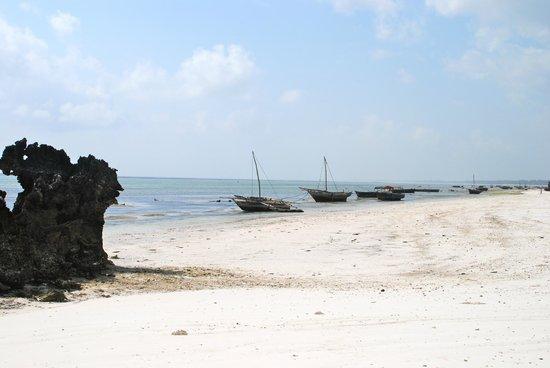 Matemwe Lodge, Asilia Africa: beach