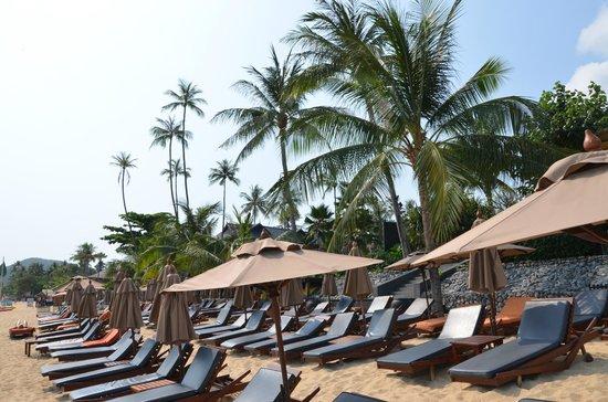 Anantara Bophut Koh Samui Resort: Strand