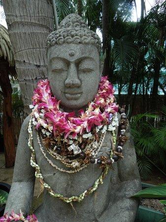 Aqua Bamboo Waikiki: Buddha Pool Side