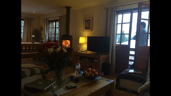 The Guest House : Log burner and the lounge