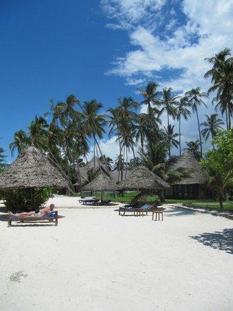 Ocean Paradise Resort & Spa: Immer ein schattiges Plätzchen
