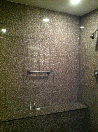 Belamere Suites: Double shower