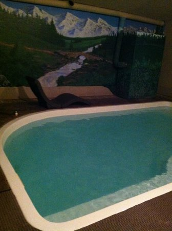 Belamere Suites : Mural in private pool