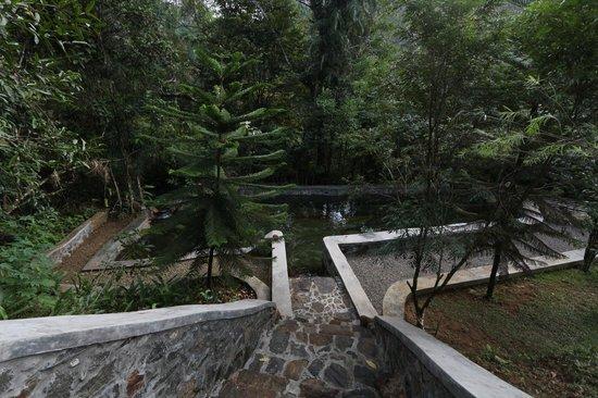 Singharaja Garden ECO-Lodge : natural water pool