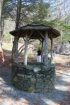 Daniel Boone Native Gardens: A water well that is cap